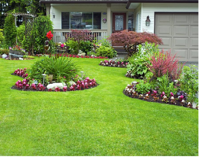 Landscaping Ideas for Curb Appeal